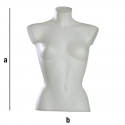 Ženski torzo T11