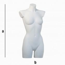 Ženski torzo T12