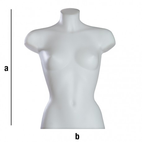 Ženski torzo T11N