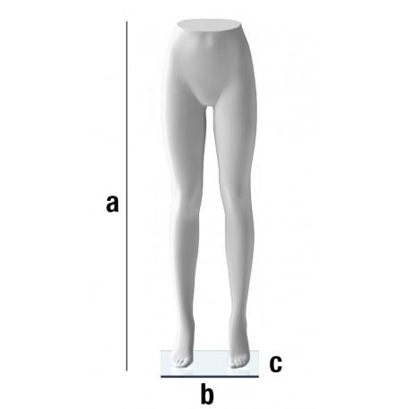Ženske noge T51